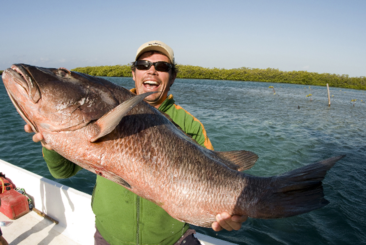 how to cook mangrove snapper in the oven