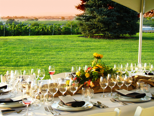 Dinner in the vineyard photo by Alicia Laury.