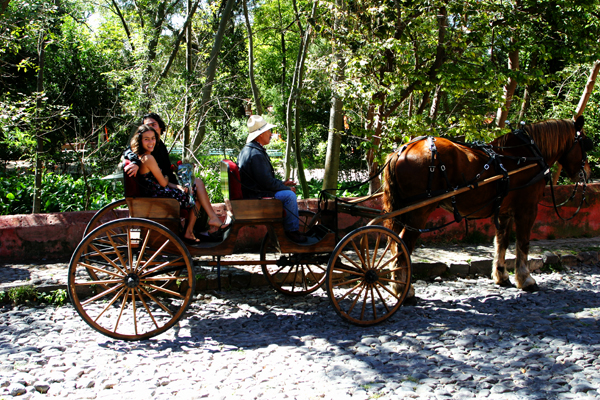 Shooting a telenovela scene in Parque Juarez. Photo by David Lansing.