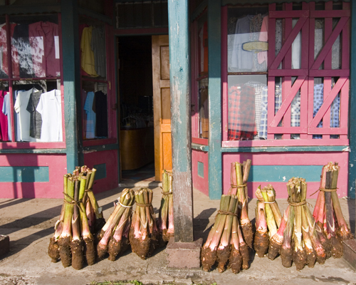 Bundles of taro for sale at Levuka's informal market. Photo by David Lansing.