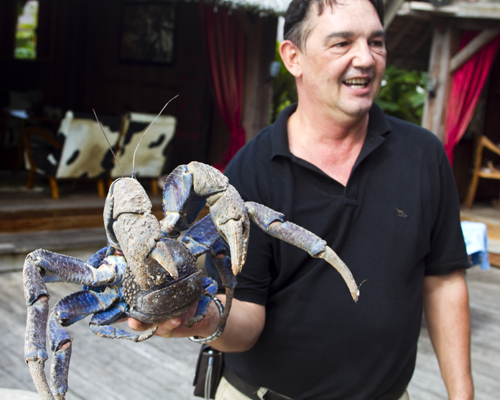 Frederick, the gm at Ratua, holding a coconut crab. Photo by David Lansing.