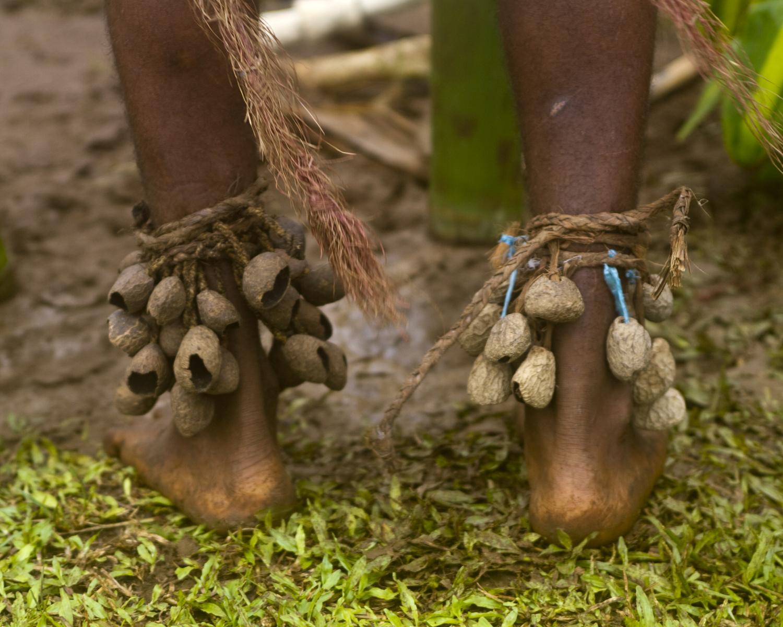 Chief Bule Kone's ankle rattles, called vivangs. Photo by David Lansing.
