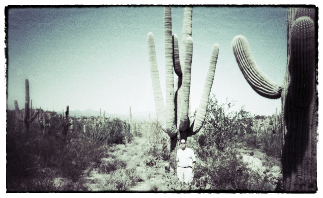 Saguaro National Park near Tucson