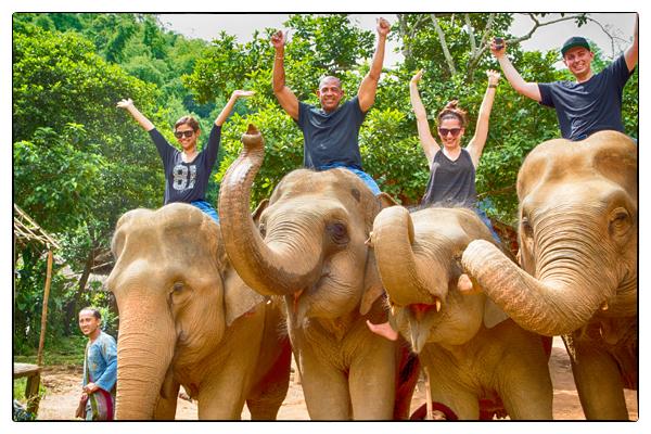 Elephant camp, Anantara